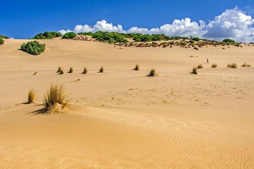 auf den Dünen der Costa Verde