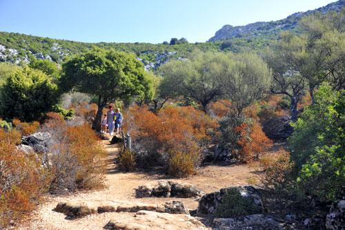 Wanderwege auf dem Su Golgo