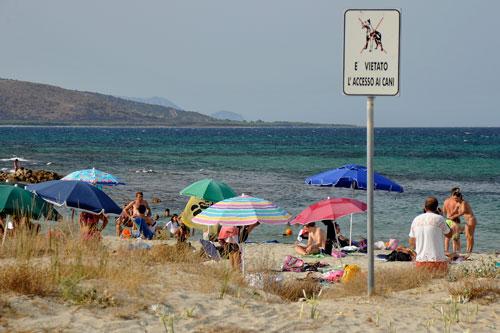 Hundeverbot am Strand