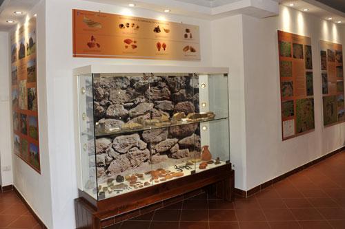 Nuraghe Losa, Museum