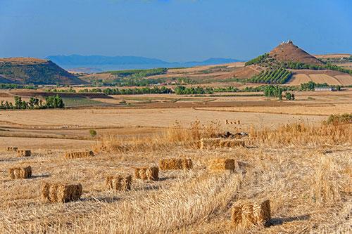 typische Marmilla-Landschaft