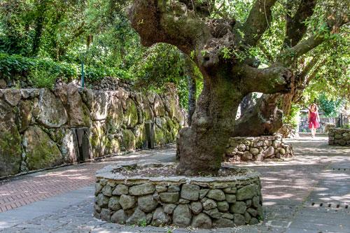 Quellen in San Leonardo de Siete Fuentes