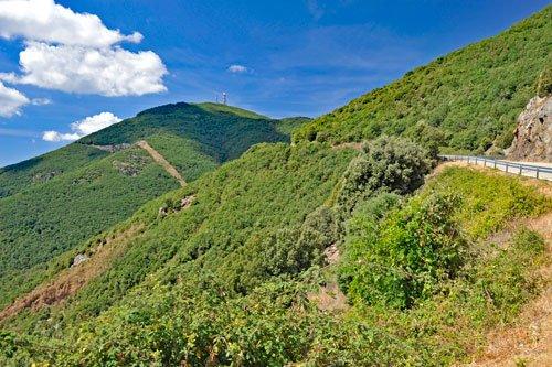 Blick auf den Monte Rasu